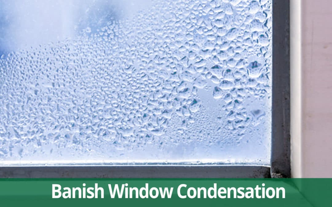 Which Replacement Window Banishes Condensation?